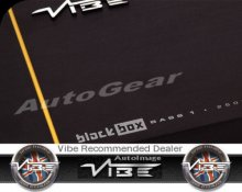 Vibe BlackBox Black Box B1 Monoblock Mono Amp Amplifier